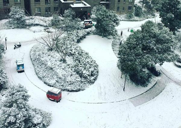 Tuyết bắt đầu rơi từ khoảng 15h ngày 24/1 ở nhiệt độ -1 độ C, nhiệt độ sẽ tiếp tục giảm trong vài ngày tới. Trên mạng xã hội, người dân và khách du lịch tại Thường Châu đang đồng loạt khoe hình ảnh và clip tuyết rơi trắng xóa, phủ khắp cành cây ngọn cỏ, các khu dân cư trên khắp thành phố.