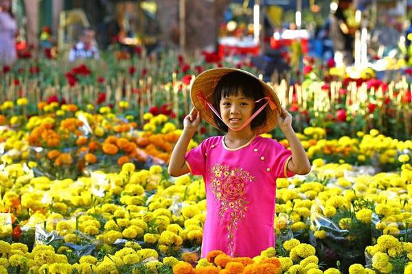 Hoa vạn thọ thu hoạch tại Làng hoa Sa Đéc mỗi dịp tết