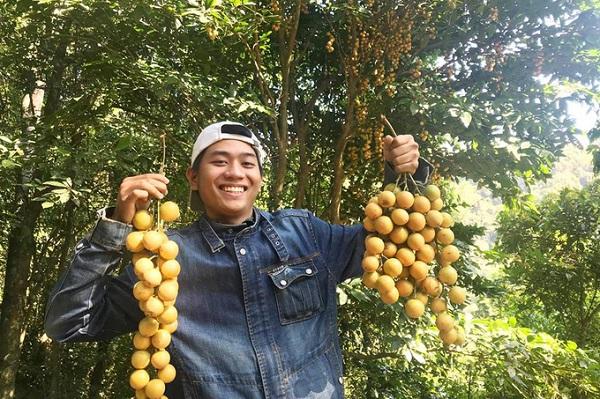 Đến đây, du khách còn được trải nghiệm vườn trái cây theo mùa.