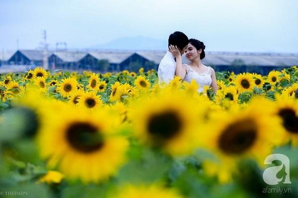 """Chỉ cần những bông hoa làm """"trợ thủ"""", là cô dâu chú rể đã có bộ ảnh đẹp lung linh."""