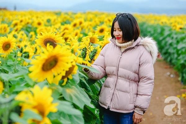 ngam-canh-dong-hoa-huong-duong-bat-ngan-hut-mat-vang-ruc-kieu-hanh-trong-con-mua-dau-xuan-ivivu-15