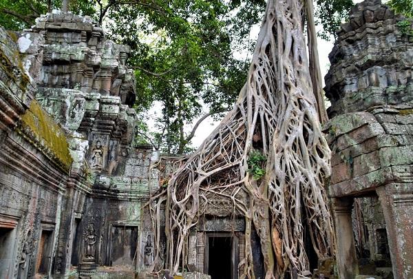 Đường mòn đến đền thờ trong rừng: Sâu trong rừng Campuchia là những tàn tích của một nền văn minh. Khách du lịch có thể đi xe đạp qua một số ngôi đền Khmer nổi tiếng như Bayon, nơi có những bức tường chạm khắc hơn 200 khuôn mặt khổng lồ, hay ngôi đền Ta Prohm độc đáo, được bao phủ bởi thân cây và dây leo. Ảnh: Encirclephotos.