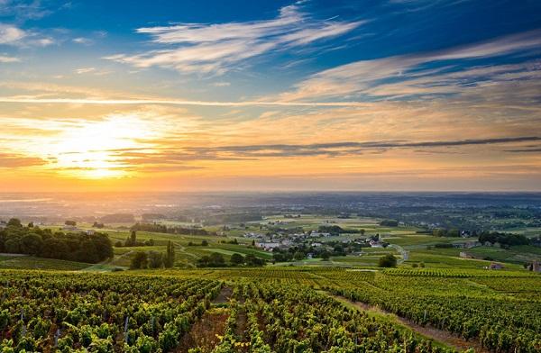 Beaujolais, Burgundy, Pháp: Beaujolais nằm ở phía Bắc Lyon và phía Tây của Rhône, nổi tiếng với những ly rượu vang hấp dẫn, mang hương vị đặc trưng. Bên cạnh đó, nơi đây là một vùng đất hùng vĩ, có những ngọn đồi, các vườn nho trên sườn dốc cùng những ngôi làng nhỏ. Ảnh: Cruise-adviser.
