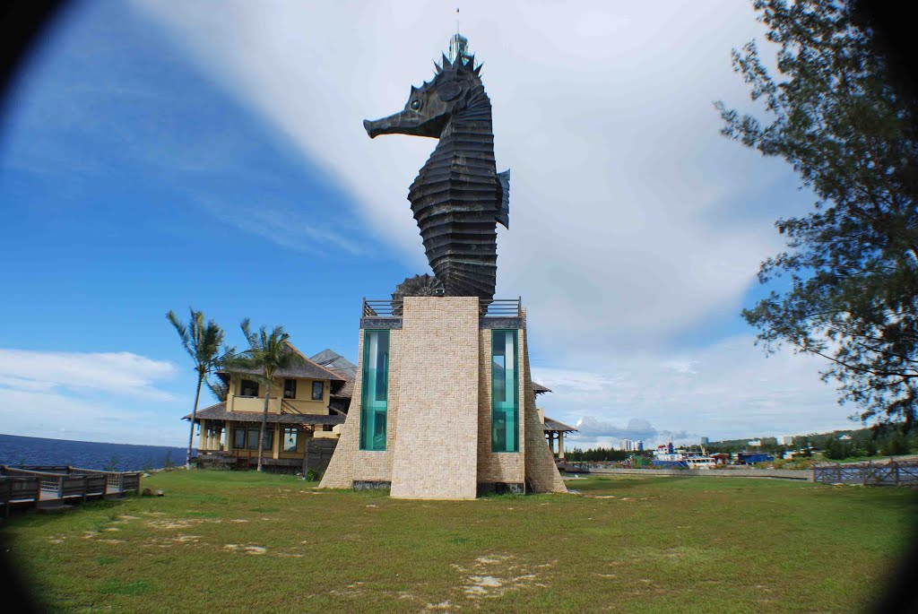 Cá ngựa là biểu tượng của Miri. Du lịch biển cũng khá phát triển tại thành phố, với các dịch vụ lặn ngắm san hô được ưa chuộng.