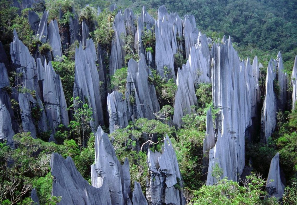 Trung tâm thành phố không có nhiều điểm tham quan, người ta đến đây để trung chuyển đến các địa điểm du lịch sinh thái ấn tượng khác của Sarawak, với 4 công viên quốc gia nổi tiếng là Gunung Mulu, Niah, Lambir Hills và Loagan Bunut. Công viên quốc gia Gunung Mulu, cách Miri khoảng 45 phút đường bay, nổi tiếng bởi những hang động đá vôi, những lòng hang rộng nhất thế giới. Nơi này còn rặng núi đá chông The Pinnacles ấn tượng.
