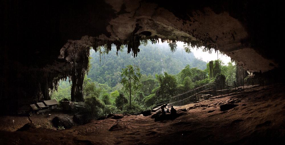 Hang Niah Great ở Công viên quốc gia Niah, cách Miri 2 giờ đi xe gắn máy. Đây là địa điểm tìm thấy những di tích lâu đời nhất của con người ở Đông Nam Á.