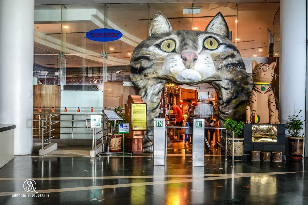 Bạn cũng không nên bỏ lỡ cơ hội tham quan bảo tàng mèo, với hàng trăm hiện vật liên quan đến mèo từ cổ chí kim được trưng bày.
