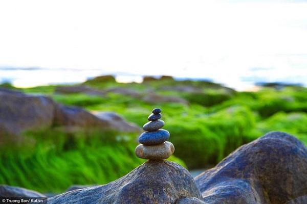Lớp rêu xanh phủ trên đá tạo nên một khung cảnh thiên nhiên kỳ thú thu hút du khách