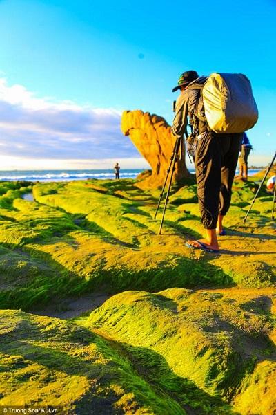 Để có những bức ảnh rêu xanh tuyệt đẹp, các nhiếp ảnh gia phải dậy từ sáng sớm