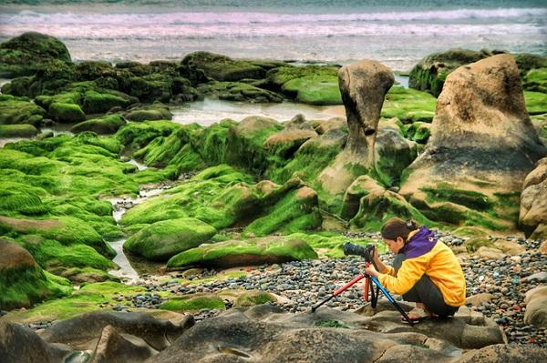 """Màu xanh huyền bí ở nơi này tạo ra nguồn cảm hứng lớn cho nhiều tay máy dù chuyên hay không. Để săn được những bức ảnh đẹp cũng không kém phần công phu, bởi mực nước biển lên xuống sẽ gây cản trở tầm nhìn. Nếu mực nước xuống thấp quá sẽ khiến rong, rêu trông khô và mất đi độ mượt mà. Rêu sẽ chuẩn màu khi biển yên lúc sáng sớm hoặc hoàng hôn. Vì vậy, bạn cần lên lịch kỹ từ thời gian cho hành trình """"săn rêu"""" của mình.  Ảnh: Vu Patrick"""