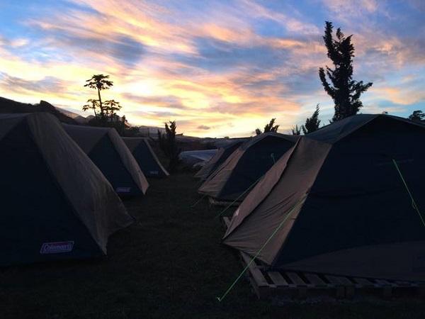 Tuy không có phòng cho khách lưu trú, nhưng bạn có thể đăng ký ngủ lều qua đêm ở khu đất trống ngoài sân, khá an toàn và không phải lo lắng vấn đề vệ sinh cá nhân bởi nhà chủ nằm ngay sau lưng.