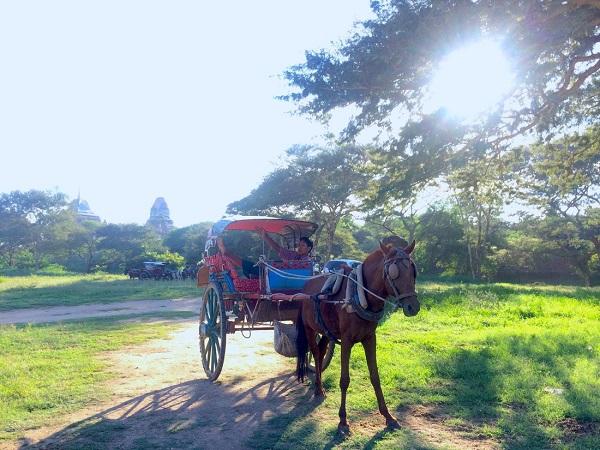 Những đền đài nhuốm màu thời gian vốn gắn liền với một Bagan huyền thoại, đằng sau đó là cuộc sống mưu sinh thường nhật vẫn diễn ra. Thấp thoáng hình ảnh người đàn ông nằm thư thả trên chiếc xe ngựa chờ chở khách hành hương - Ảnh: Bông Mai