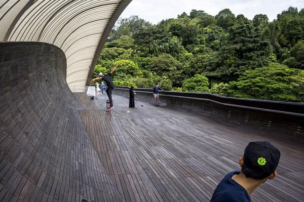 Cầu đi bộ Henderson Waves cao nhất ở Singapore, được thiết kế dựa trên hình dáng con sóng - Ảnh: Suzanne Lee