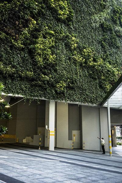 Khu vườn ở Ocean Financial Centre là sự kết hợp của 51.000 chậu cây cỏ với 25 loài thực vật khác nhau - Ảnh: Suzanne Lee