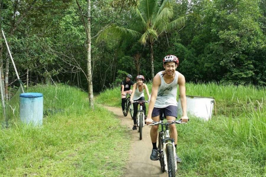 Một trong những trải nghiệm thú vị nhất trên đảo Pulau Ubin là đạp xe trên những con đường mòn rợp bóng cây xanh. Ảnh: Rachel Erasmus.