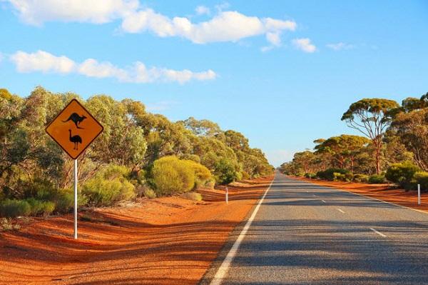 Outback, Australia: Vùng đất khô cằn này thu hút rất đông du khách, nhờ thiên nhiên hoang dã đa dạng.