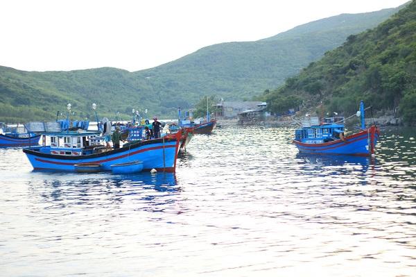 Sáng sớm, những cuộc mưu sinh lấp đi nỗi lo cơm, áo, gạo, tiền bắt đầu nơi xã đảo Bích Đầm - Ảnh: Bông Mai