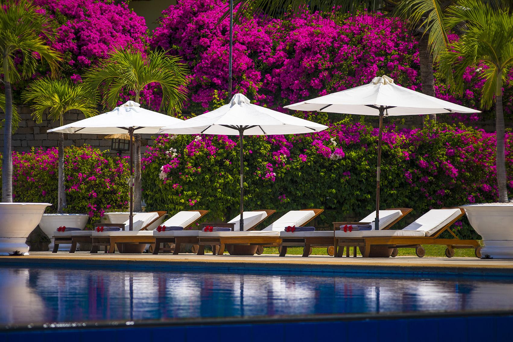 Victoria Phan Thiết nhuộm màu hồng rực bởi hoa giấy.