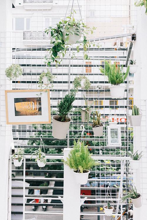 Mảng xanh trang trí trong quán tạo cho thực khách cảm giác thoải mái.