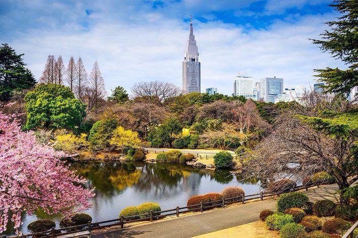 Shinjuku Gyoen - Ảnh: japanbook.net
