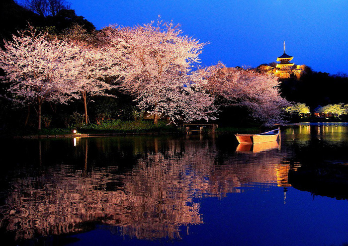 Vườn Sankeien - Ảnh: Yokohama