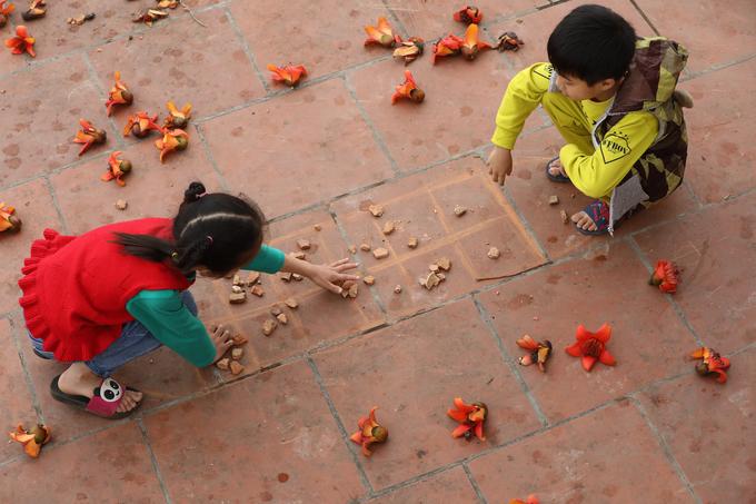 Hoa gạo cũng là một trong những loài hoa gây nhiều cảm hứng sáng tác cho các nhiếp ảnh gia, nhạc sĩ, nhà thơ hay họa sĩ Việt.