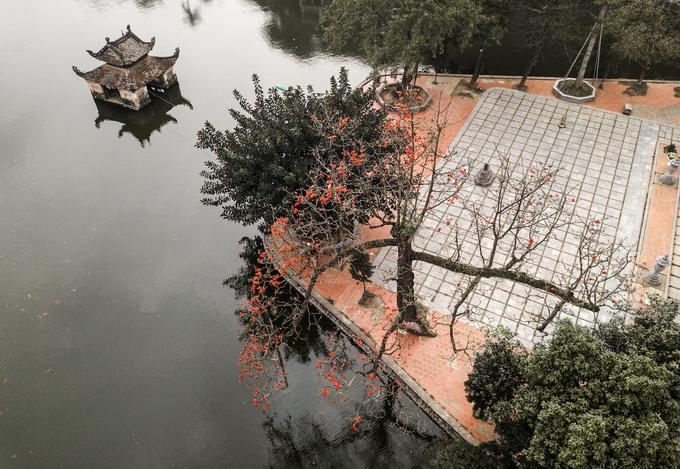 Cây hoa gạo in bóng trên mặt nước ở chùa Thầy - một danh thắng lâu đời thuộc huyện Quốc Oai, Hà Nội.