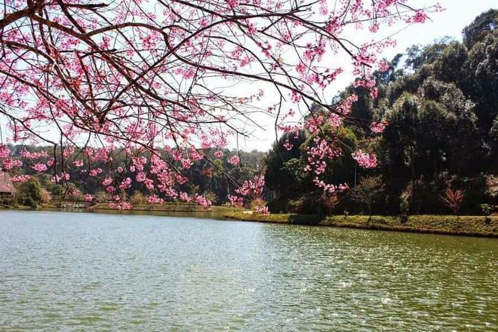Non xanh, nước biếc, hoa đẹp - cảnh thật thơ mộng. Ảnh: Mỹ Liên