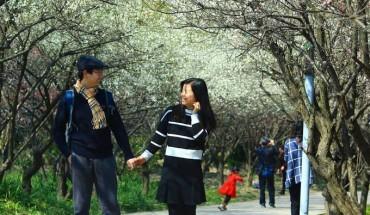 ly-do-ban-nen-den-thuong-hai-mua-xuan-ivivu-1