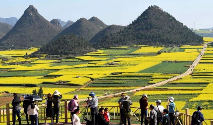 Chia sẻ Du lịch Trung Quốc, mải mê ngắm 'thiên đường' hoa cải vàng đẹp đến nao lòng ở Vân Nam