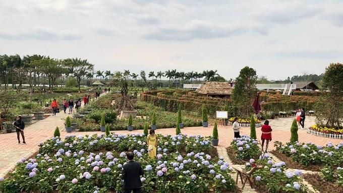 Công viên mở từ 8h đến 18h hàng ngày.  Để đến đây, du khách có thể bắt tuyến xe bus số 47 hoặc 52, điểm xuống ngay cổng vào công viên. Nếu đi xe riêng, bạn đi theo đường đê Xuân Quan, phường Thạch Bàn, quận Long Biên, công viên cách cầu Vĩnh Tuy một km về hướng Bát Tràng.