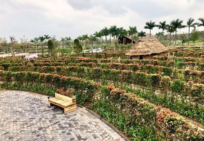 Ngoài rèn luyện khả năng xác định phương hướng, khách có thể chụp ảnh với một số tiểu cảnh bên trong mê cung như nhà đắp đất, ốc đảo hoa... Khu vực trung tâm đặt các ghế dài để khách có thể ngồi nghỉ.