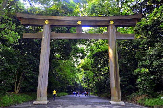 Cổng Torii dẫn vào đền được làm từ thân 2 cây gỗ nguyên khối có tuổi đời khoảng 1.700 năm trông rất uy nghi. Trước khi bước qua cổng, bạn phải cúi đầu bày tỏ sự tôn kính, đồng thời đi về hai bên đường bởi theo quan niệm của người Nhật, lối đi chính giữa dành cho các vị thần.