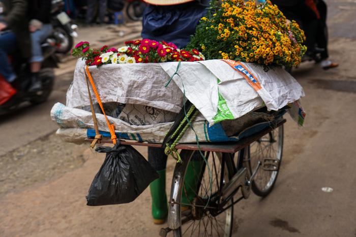Nét bình dị Việt Nam qua ảnh của tay máy Hà Lan