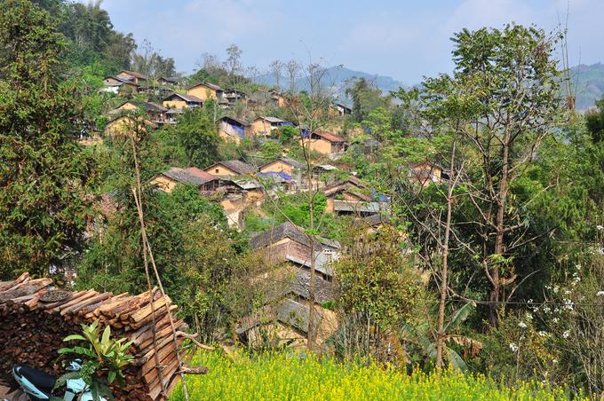 Từ trung tâm thị trấn Đồng Văn, bạn chỉ cần mất khoảng 30 phút là đã đến được ngôi làng xinh đẹp này. Đầu làng là những cây đa cổ thụ hàng trăm năm tuổi, đứng sừng sững mặc cho sự tàn phá của thời gian. Chỗ này được người dân lập đền thờ để tiện thờ cúng.