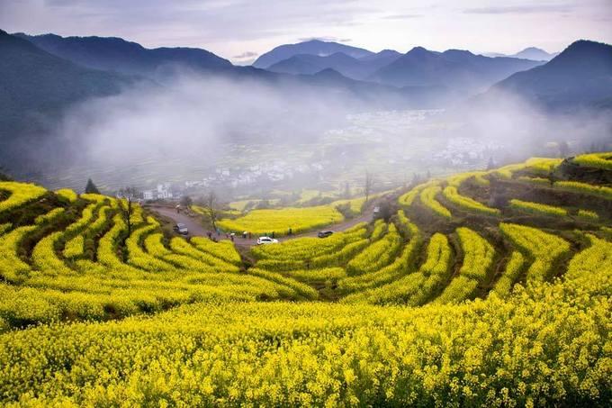 Vụ Nguyên, Giang Tây  Nằm ở phía đông Trung Quốc, Vụ Nguyên thuộc tỉnh Giang Tây là nơi đầu tiên cần nhớ nếu bạn là tín đồ mê hoa cải vàng ở đất nước tỷ dân. Những cánh đồng hoa vàng rực rỡ trải dài trên diện tích 6.700 ha, điểm xuyết ở giữa là những căn nhà trắng trong thung lũng. Thời điểm thích hợp nhất để đến Vụ Nguyên là giữa tháng 3 đầu tháng 4.