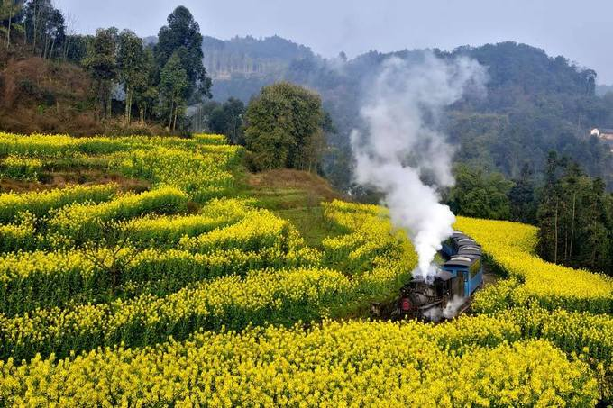 Lạc Sơn, Tứ Xuyên  Hãy đến Lạc Sơn, tỉnh Tứ Xuyên phía Nam Trung Quốc vào khoảng tháng 3 để tận hưởng cánh đồng hoa vàng trải dài bất tận. Còn gì tuyệt hơn khi được ngồi trên tàu hỏa để bắt đầu chuyến đi khám phá vẻ đẹp độc đáo của cánh đồng hoa cải, hay những dãy núi hùng vĩ.