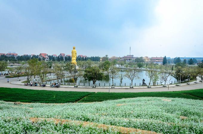 Ngoài chụp ảnh, du khách đến đây có thể ghé thăm chùa Đại Từ Ân, rộng 2 ha, hiện là trường Trung cấp Phật học Hà Nội. Các dịch vụ khác có khu trượt cỏ, nhà hàng, khu văn hóa Chăm (đang hoàn thiện), bể bơi.