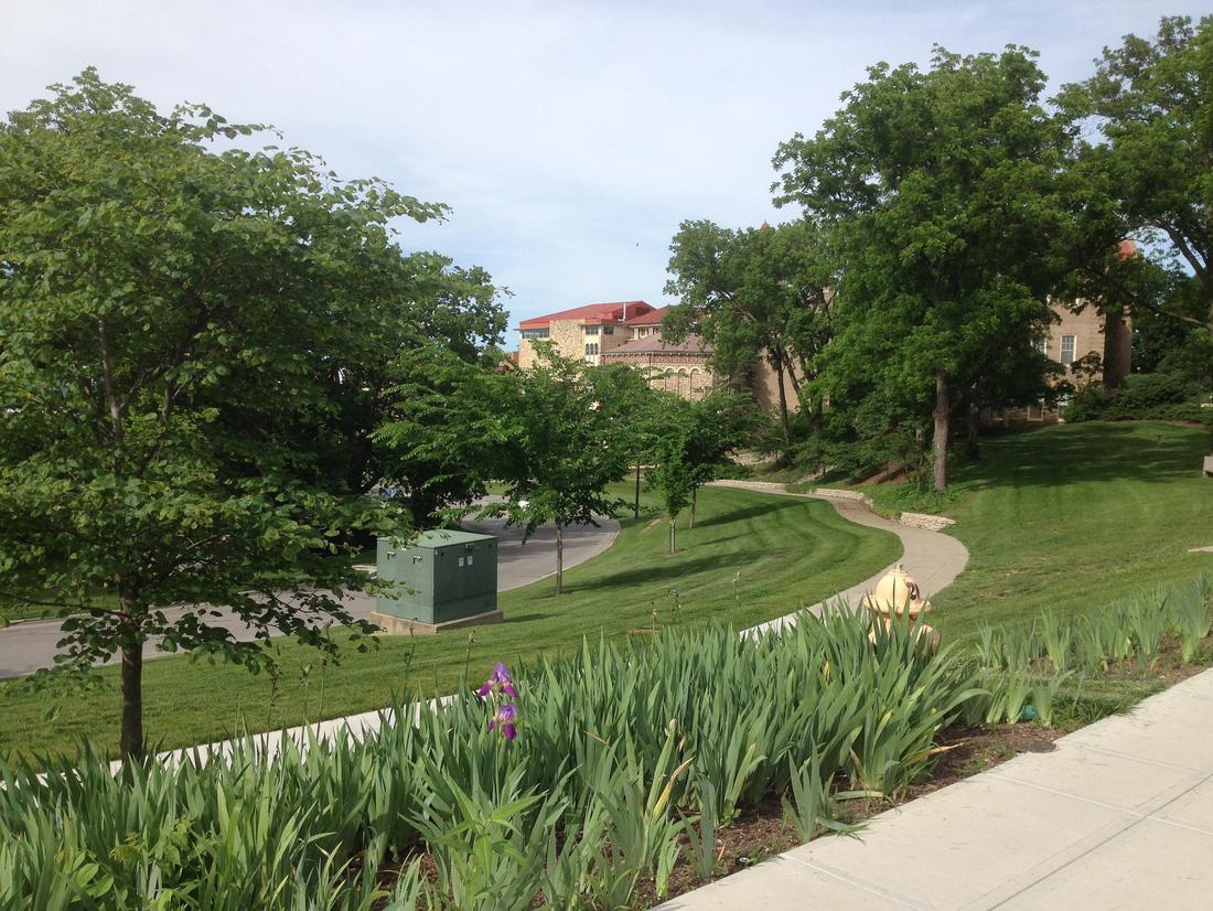 Khuôn viên của trường đại học Kansas phủ một màu xanh mát mẻ mỗi khi xuân về
