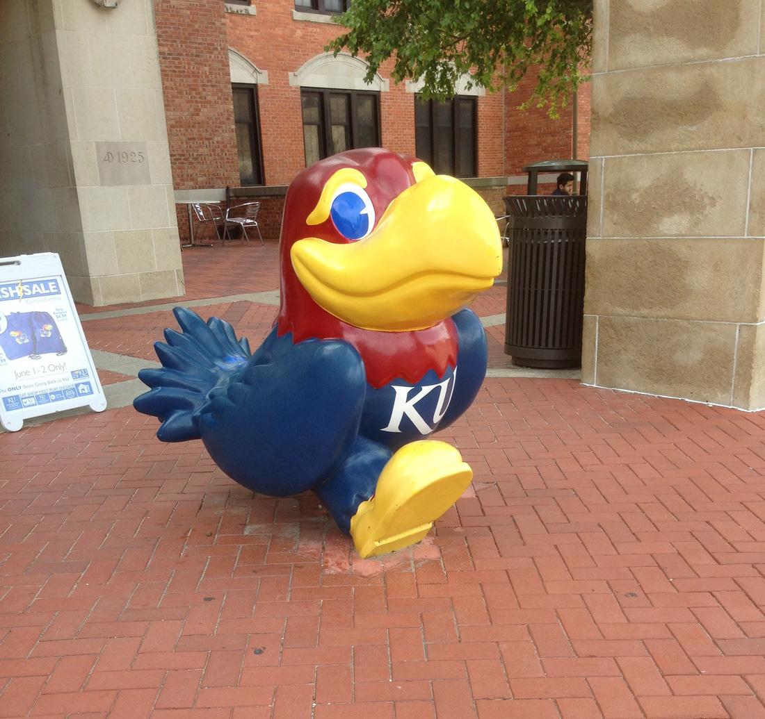 Bạn đừng quên chụp hình với linh vật của trường là chú chim Jayhawk này nhé!