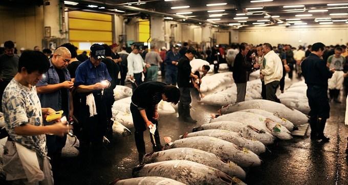 Cá là món ăn không thể thiếu trong ngày vì đây là loại thực phẩm ít chất béo, giàu omega-3 giúp tăng trí nhớ, đồng thời protein trong cá có lợi cho sức khỏe, tốt cho hệ tiêu hóa và tim mạch. Vì thế ở Nhật, các chợ cá luôn đông khách, họ tiêu thụ khoảng 80% lượng cá ngừ vây xanh đánh bắt trên toàn thế giới.