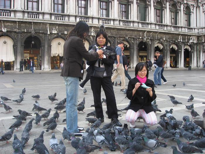 Du khách Việt Nam đang chơi đùa với những chú bồ câu thân thiện ở Roma. Ảnh: Lê Thu Lan