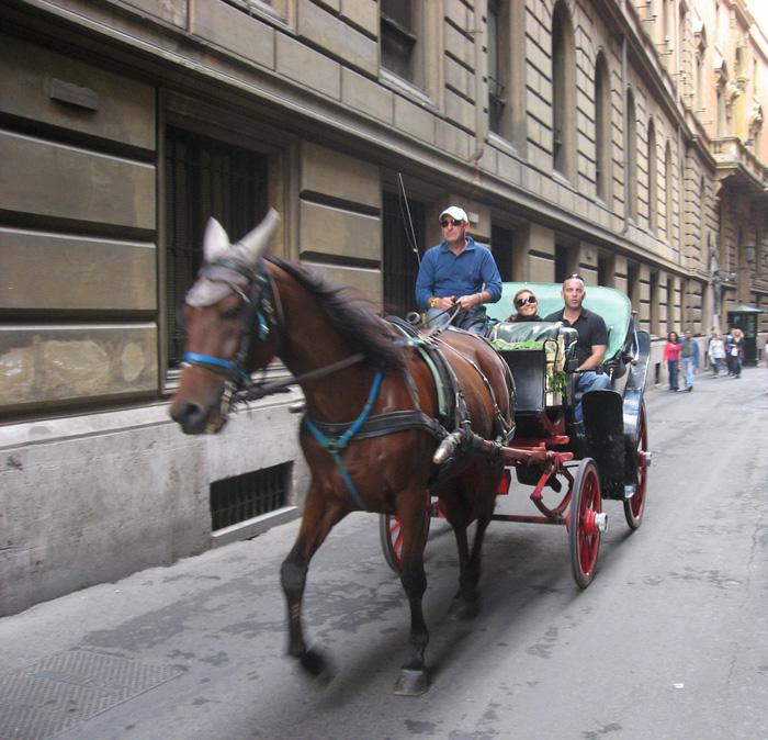 Trải nghiệm tour thành Roma trên xe ngựa cũng là điều thú vị. Ảnh: Lê Thu Lan
