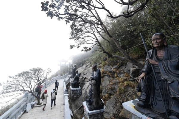 Loài hoa còn được gọi là hoa báo xuân này bám rễ sâu trong đá, suốt mùa đông như ngủ trong giá rét, băng tuyết, chờ nắng ấm cuối xuân đầu hạ để nở rộ sắc màu.Những người xây dựng lên Sun World Fansipan Legend đã kỳ công gìn giữ các gốc đỗ quyên 300 - 400 trăm tuổi. Trên đường La Hán quanh co dẫn lên đỉnh thiêng, du khách dễ dàng nhìn thấy những gốc đỗ quyên quang trụ đã được phong cây di sản Việt Nam.