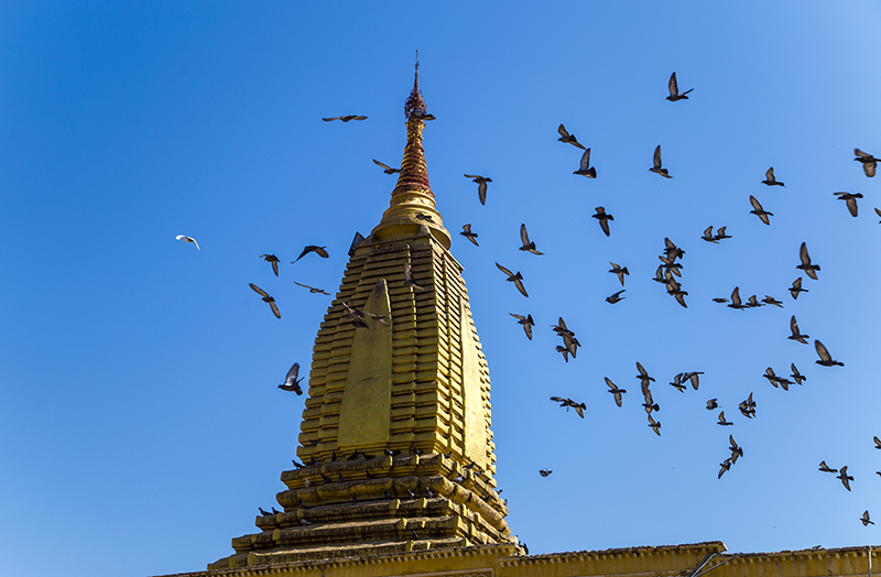 shwezigon-ngoi-chua-dat-vang-dau-tien-va-linh-thieng-nhat-o-myanmar-ivivu-12