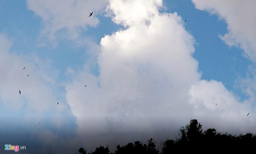Chim yến bay lượn về tổ bên vách đá núi lửa kỳ vĩ ở Gành Yến. Hiện các nhà khoa học đã gửi mẫu đá nơi đây đến Hà Lan phân tích, để lập hồ sơ thắng cảnh này cùng với di sản địa chất Lý Sơn, Bình Châu trình Ủy ban Di sản Quốc gia công nhận và trình lên Hội đồng Di sản thế giới để UNESCO công nhận quần thể di sản thiên nhiên nơi đây là công viên địa chất toàn cầu. Quảng Ngãi
