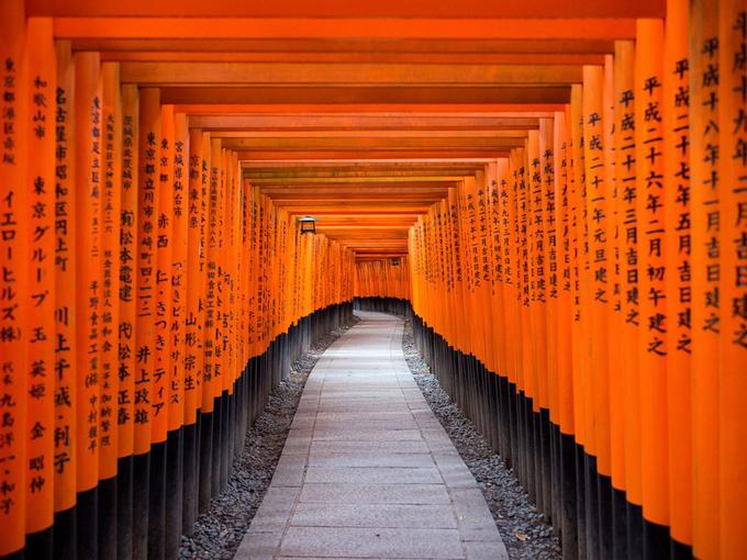 Nổi tiếng thứ 2 ở cố đô Kyoto là ngôi đền Fushimi Inari-Taisha. Nếu yêu nước Nhật, hẳn bạn sẽ cảm thấy quen thuộc với con đường đỏ rực bởi hàng nghìn cây cột torii nối nhau trải dài tít tắp. Nơi đây là địa điểm chụp ảnh check in bắt buộc nếu bạn đã tới Kyoto.