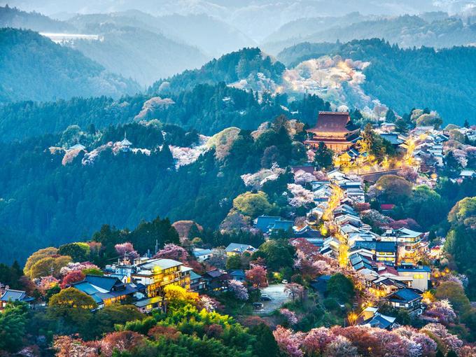 Núi Yoshino từ xưa đã nổi tiếng về hoa anh đào với 30.000 cây từ 200 chủng loại khác nhau. Vào thời điểm hoa nở rộ, cả ngọn núi Yoshino nhuộm trong sắc hồng nhạt của loài hoa biểu tượng cho Nhật Bản này.
