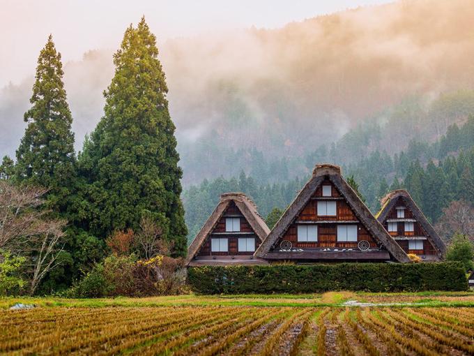 Làng Shirakawa-go cũng trở thành điểm du lịch hút khách cũng những năm gần đây. Nằm tại miền Trung Nhật Bản, bạn có thể đi bus từ các thành phố lớn như Nagoya tới ngôi làng cổ này, nơi có kiến trúc độc đáo, ẩn giữa khu rừng. Vào mùa đông, tuyết sẽ phủ trắng những mái nhà giống hệt như câu chuyện cổ tích.