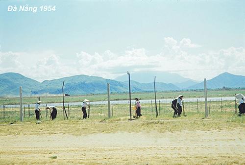 Cũng thời điểm này, người dân Đà Nẵng sống nhờ nghề đánh bắt. Trong hình là một thanh niên đứng ở vịnh biển.